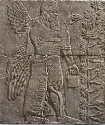 Финики на стене храма